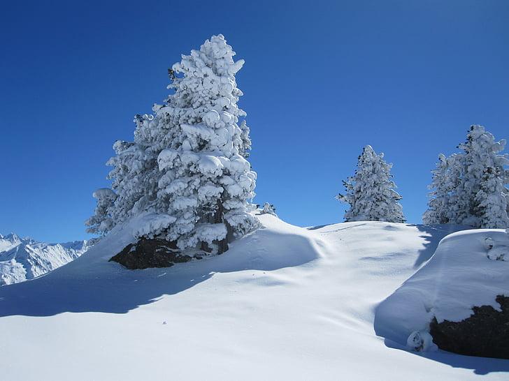 snow, winter, mountain, wintry, tree, winter dream