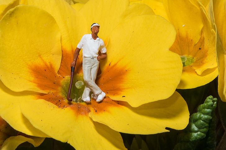 miniatyr, fotografering, Golf, blommor, makro, Stäng, Figur