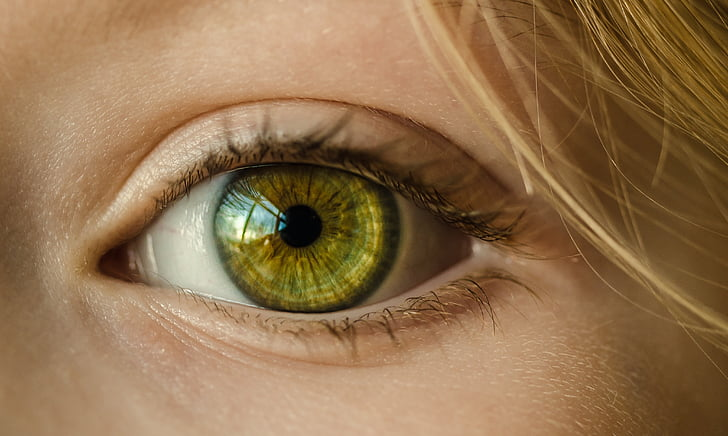 œil, oeil vert, gros plan, macro, jeune fille, jeune, vert
