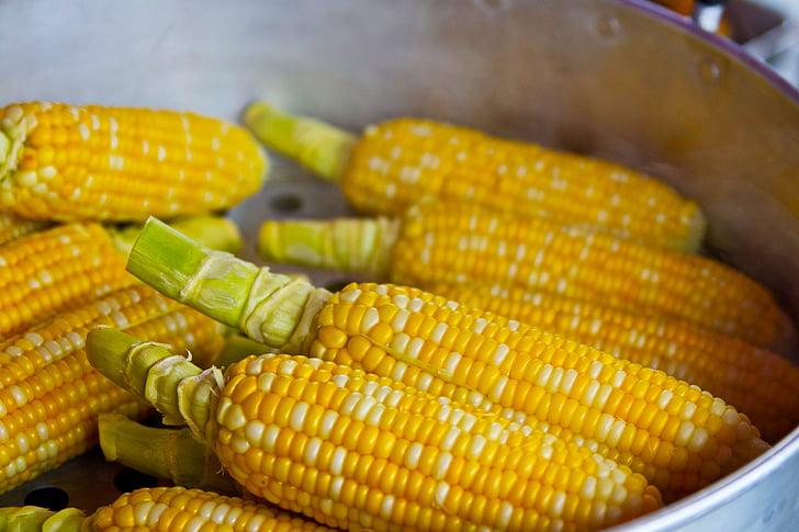 поп царевица, жълто, поп, пуканки, храна, хранене, ядат