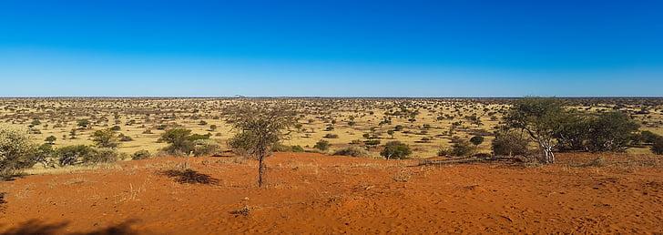 africa, namibia, desert, wilderness, kalahari, landscape, steppe