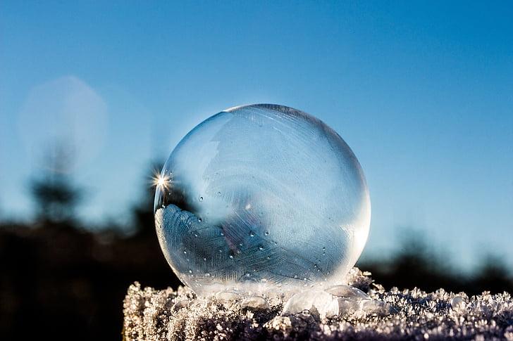 frozen bubble, soap bubble, frozen, winter, sunbeam, sun, landscape