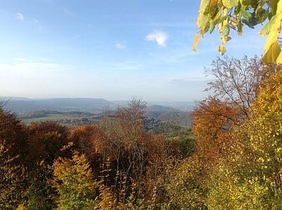 nature, autumn, landscape, trees, colorful, golden autumn