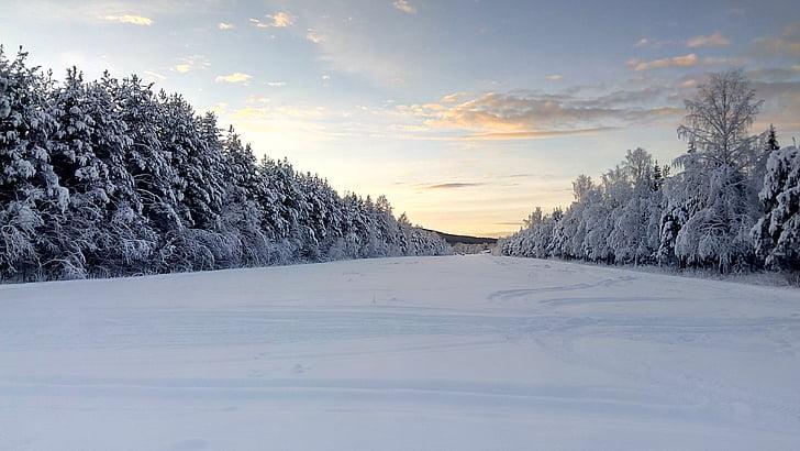 wintry, lapland, sweden, snow landscape, winter, snow, nature
