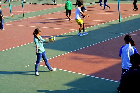 esportes, pessoas, alunos, Voleibol, Tribunal, tribunais, jogo