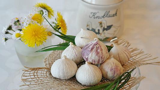 küüslauk, Hiina küüslauk, Allium sativum, köök, kokk, Spice, hooaja