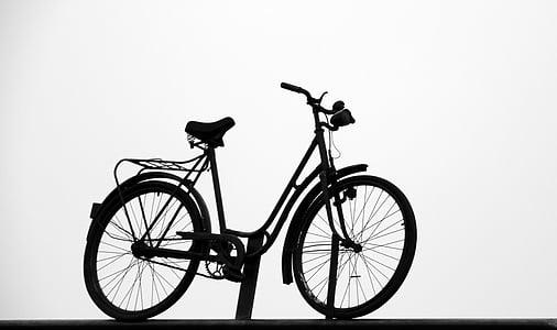 velosipēds, melnbalts, velosipēdi, cikls, velosipēdu, rats, Transports