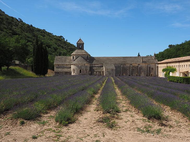 Abbaye de senanque, vienuolynas, abatija, Dievo Motinos de sénanque, cistercians ordinas, Gordes, Vaucluse