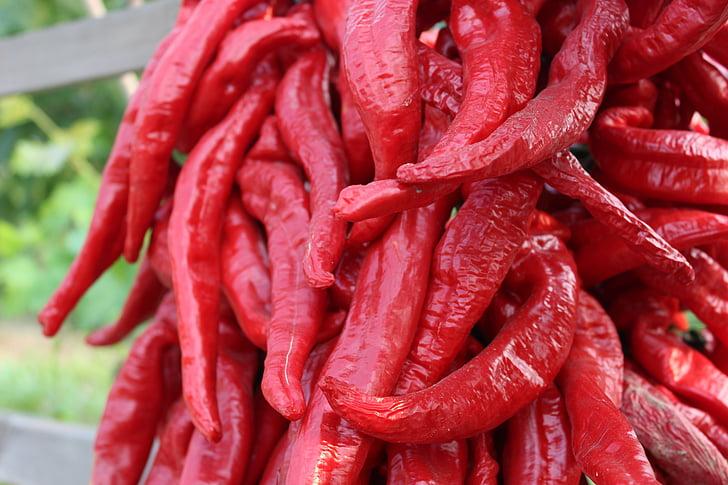 sarkanie pipari, sarkana, pieaugums