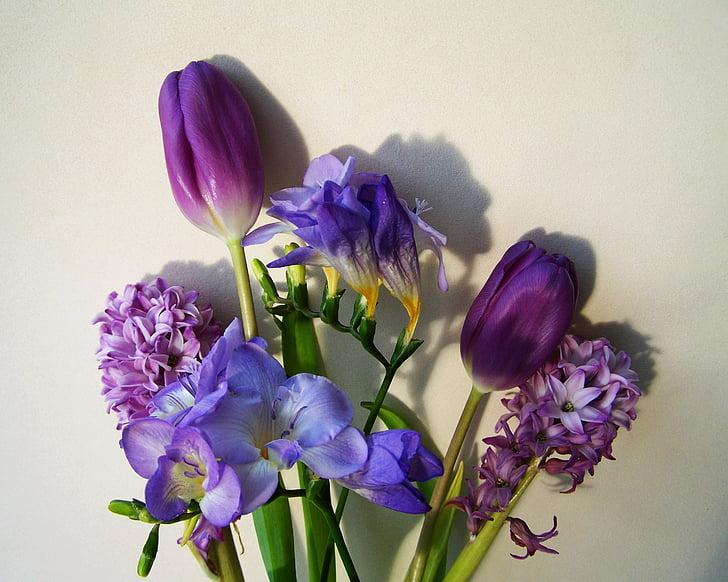 RAM de flors, colors blavosos-purple, flor de tall, flor, porpra, close-up, planta