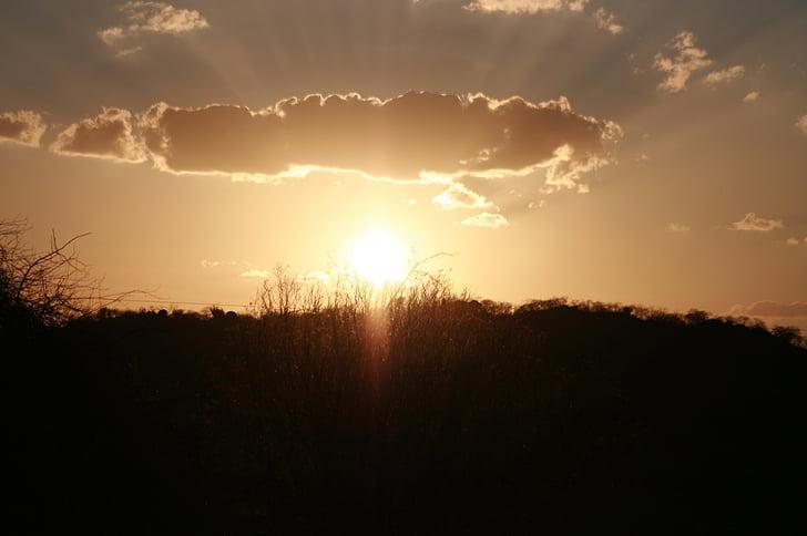 Sol, solnedgång, sertao, Brasilien, naturen, solen, solljus