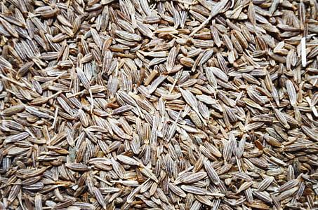 toàn bộ cumin, thì là Ai Cập, hạt tiêu, thơm