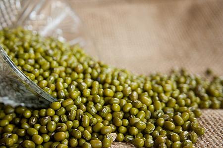 Mung bonen, Vigna radiata, moong Boon, groene gram, Gouden gram, bonen, groen