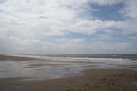 zee, strand, prachtig strand, golven, water, natuur