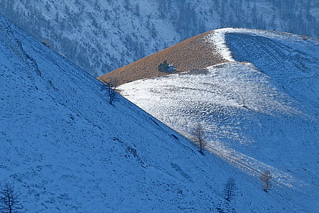 paisatge, natura, muntanyes, l'hivern, neu, contrasten, llum i ombra
