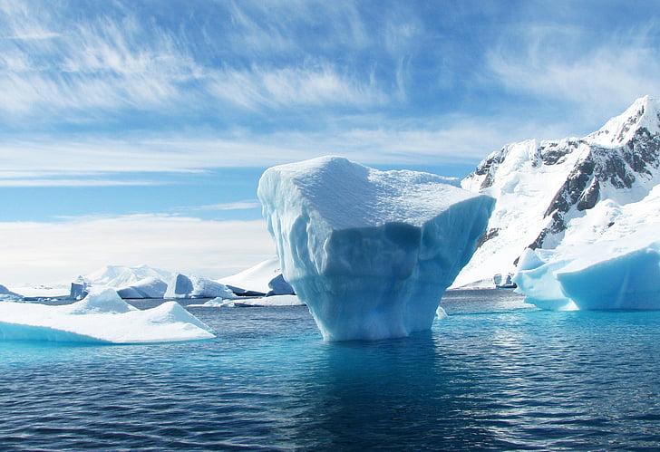 iceberg, l'Antàrtida, polar, blau, gel, Mar, paisatge