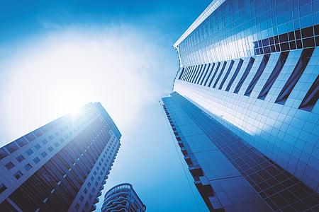 business, skyscraper, office, modern, city, finance, architecture