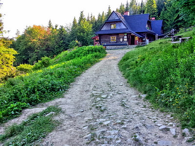 hall krupowa, youth, mountains, beskids, hiking trail, way, landscape