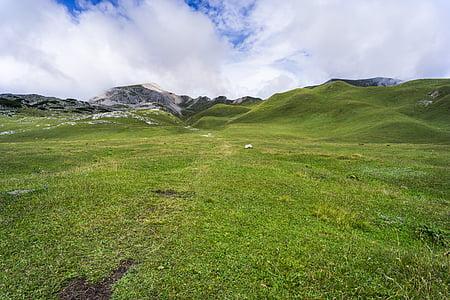 grass, grassland, hills, landscape, meadow, mountains, mountain