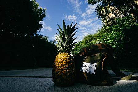 nanas, makanan penutup, hidangan pembuka, buah, jus, tanaman, jalan