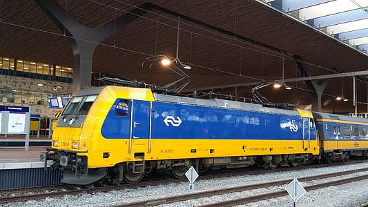 train, netherlands, station, railway, railroad, blue and yellow, transportation
