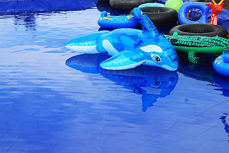 dolphins, toys, blue water, fish, children's games