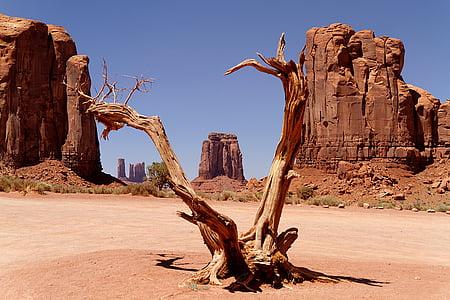 Utah, salvatge oest, Navajo, oest, Arizona, desert de, EUA