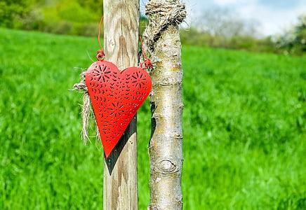 heart, red, affection, romance, love, nature, heart Shape