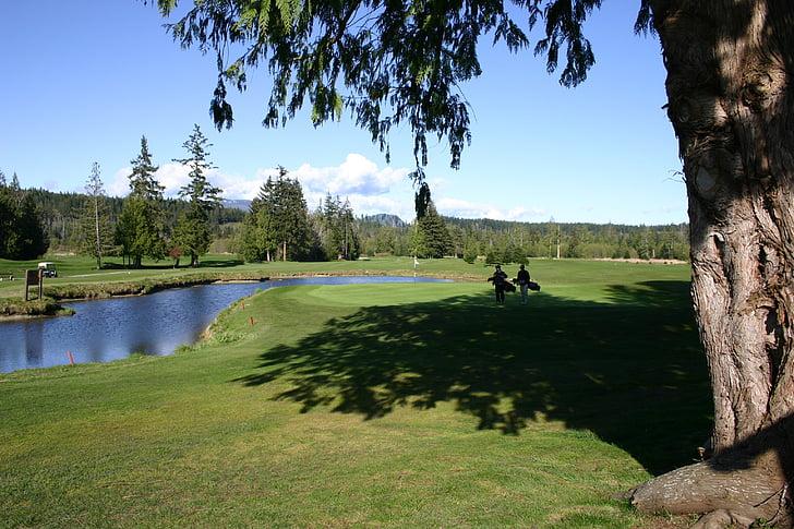 golf, nature, outdoors, course, grass, green, sport