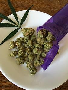 kanabisa, marihuana, korov, droga, Konoplja, lijek, biljka
