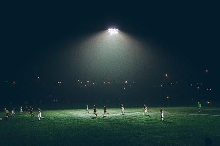 atletes, futbol, executar, futbol, esport, camp d'esports, Estadi