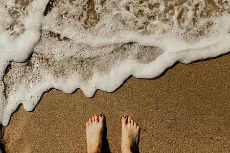 natura, platja, riba, sorra, l'aigua, ones, persones