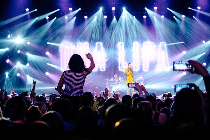 artist, audience, band, concert, crowd, fans, lights