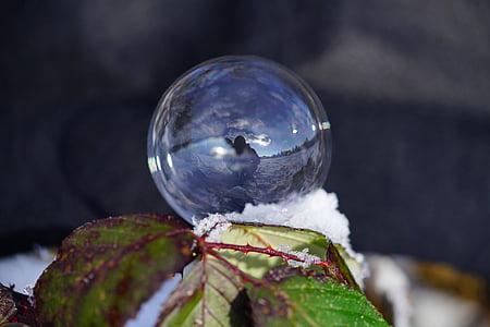 soap bubble, winter, ball, wintry, cold, frozen, frost