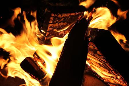 foc, brases, fusta, flama, foguera, calor, cremar