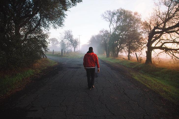 home, boira, natura, persona, carretera, caminant