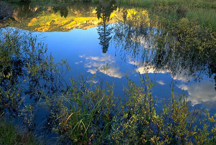 réflexion, eau, l'automne, Scenic, automne, Colorado, Zen
