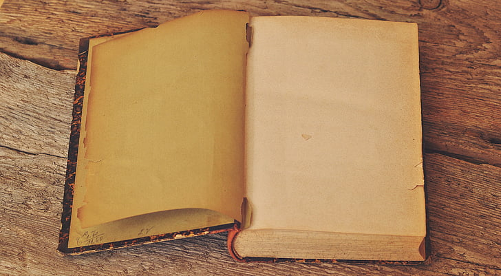 book, old, antique, pages, empty pages, book pages, retro look