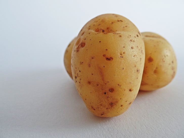 poteter, grønnsaker, feltet, spise, Bio, natur, Bauer