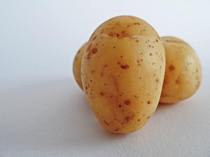 kartofler, grøntsager, felt, spise, Bio, natur, Bauer