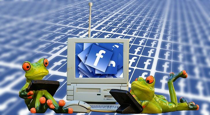 počítač, Internet, Chat, Monitor, komunikácia, laptop, www