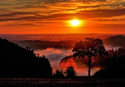 Alba, boira, natura, matí, Vulkaneifel, sol de matí, estat d'ànim