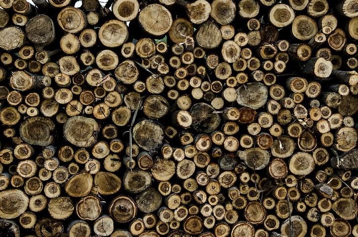 drewno, drzewa, pręt, Indonezyjski