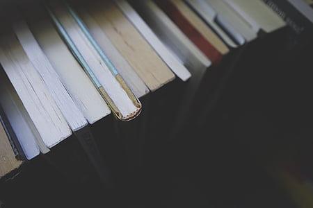 grāmatas, izglītība, zināšanas, bibliotēka, literatūra, grāmatas, Wood - materiāli