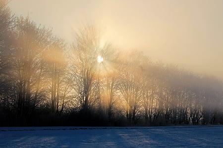 Alba, paisatge, l'hivern, boira, Sunbeam, morgenstimmung, boira