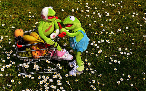 kupovina, voće, zdrav, Kermit, žaba, kupovina tegliti, vitamini