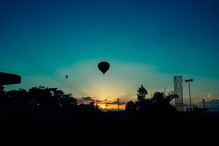 fågel, flygande, luftballong, siluett, Sky, solen, soluppgång