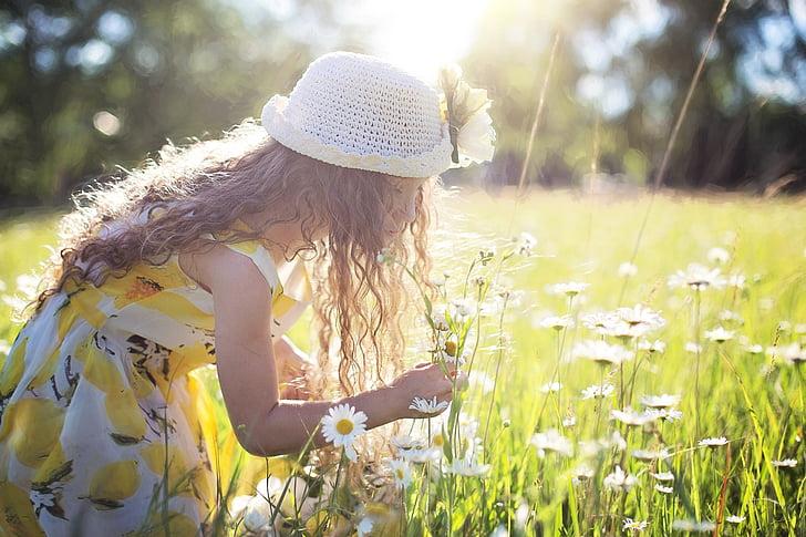 cueillette de fleurs, marguerites, petite fille, enfant, nature, petite enfance, heureux