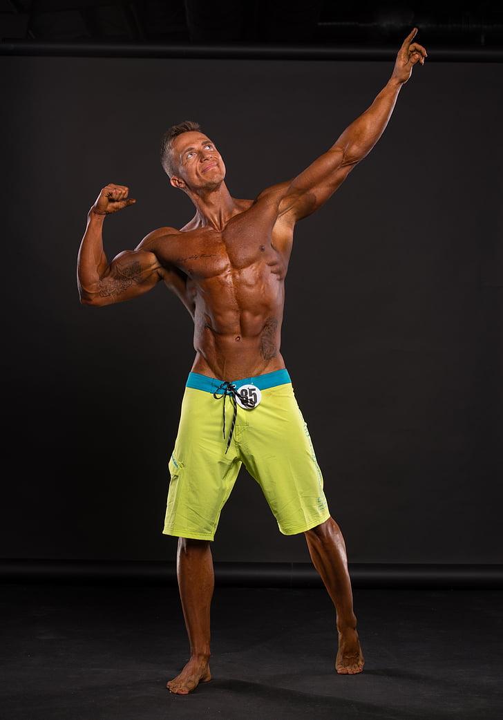 gimnàs, músculs, home, construcció muscular, homes, força, mascles