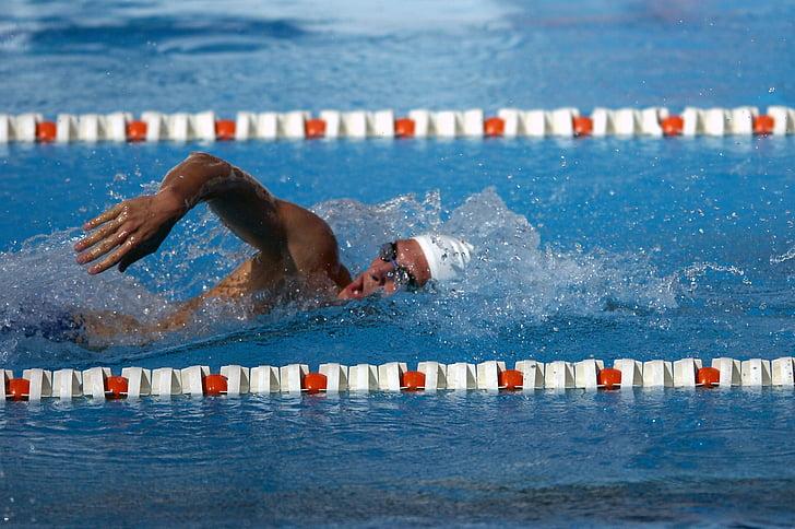 nedador, estil, l'aigua, piscina, competència, nedar, atleta